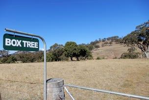 190 Coogah Road, Blandford, NSW 2338