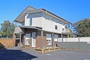 3/51 Warbler Avenue, Aberglasslyn, NSW 2320