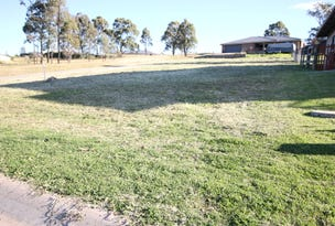 19 Lou Fisher Place, Muswellbrook, NSW 2333