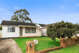 45 Rosedale St, Canley Heights, NSW 2166