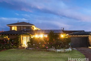 1 Kanella Road, Shelley, WA 6148