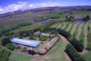 Ilma 528 Peelwood Road, Laggan, NSW 2583