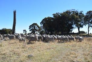Deer Park 2106 Baldersleigh Road, Guyra, NSW 2365