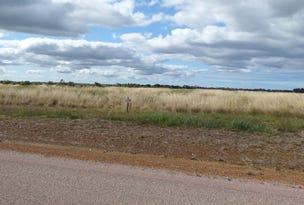 Lot 529 Verrucosa Pde, Hopetoun, WA 6348