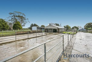44 Rendell Road, Neerim East, Vic 3831