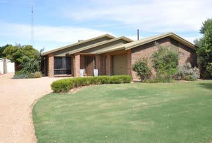 193 Rex Andrew Road, Waikerie, SA 5330