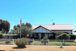 57 Wright Street, Peterborough, SA 5422