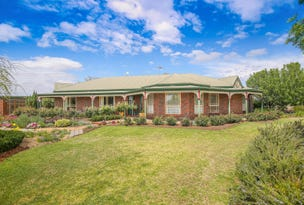 47 Morpung Avenue, Nichols Point, Vic 3501