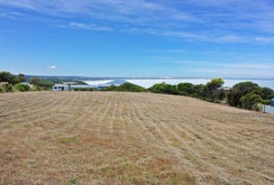 Lot 20 Panoramic Drive, Cape Bridgewater, Vic 3305
