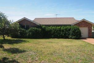11 Cobden Place, Parkes, NSW 2870