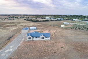 Lot 521 Ruskin Road, Dublin, SA 5501