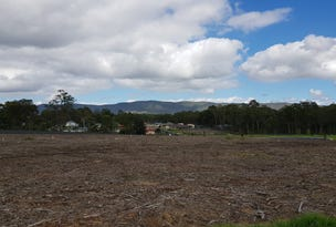 LOT 614 Proposed Road   Watagan Rise, Paxton, NSW 2325