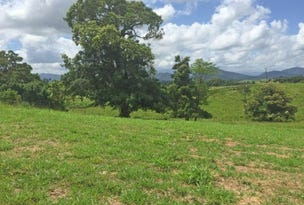 Lot 1, 2, 5 Rainforest Falls Road, East Palmerston, Qld 4860