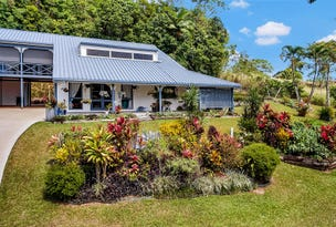 548 Palmerston Hwy, Pin Gin Hill, Qld 4860