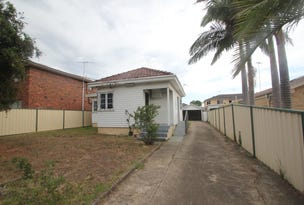 159 Canley Vale Road, Canley Heights, NSW 2166
