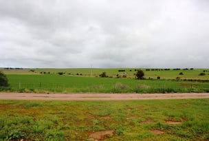 Lot 168 & 169 South Terrace, Curramulka, SA 5580