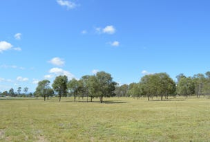 19 (Lot 11) Jacana, Adare, Qld 4343