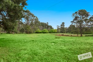 840 Gembrook-Launching Place Road, Hoddles Creek, Vic 3139
