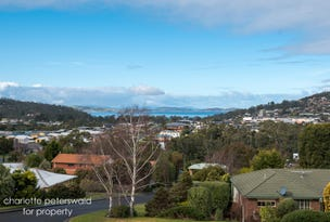 14a Fiani Court, Kingston, Tas 7050