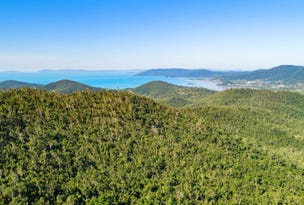 Lot 8 Riordanvale Road, Riordanvale, Qld 4800