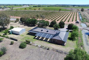 33 Research Rd, Leeton, NSW 2705