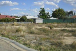 Briggs Court, Barham, NSW 2732