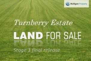 19 Turnberry Close, Fletcher, NSW 2287