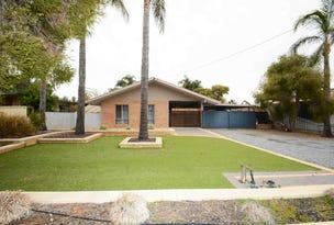 10 RYDER CRESCENT, Wentworth, NSW 2648