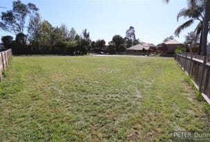 Lot 22, 45 Orchard Avenue, Singleton, NSW 2330