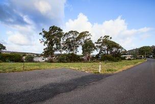 Lots 4, 5, 6, 7 and 8 Gate Five Road, Carlton River, Tas 7173