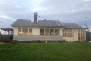 60 Snodgrass Lane, Loorana, Tas 7256