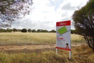 Lot 1, 29 Blain Street, East Pingelly, WA 6308