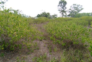 Lot 4 Lowmead Road, Lowmead, Qld 4676