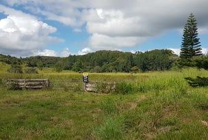 1822 Mount Molloy Mossman Road, Julatten, Qld 4871