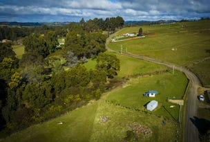 Lot 1 Tippetts Road, Mount Hicks, Tas 7325