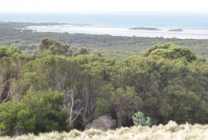 PID 7557696 North East River Road, Flinders Island, Tas 7255