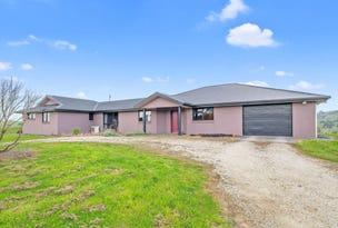 250 Mclachlans Road, Irishtown, Tas 7330