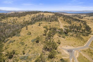Lot 10 Sugar Loaf Road, Carlton River, Tas 7173