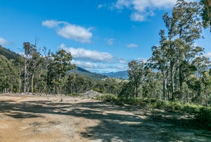 Lot 1 Denison Road, Lonnavale, Tas 7109