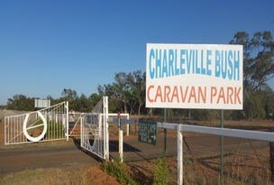 150 Diamantina Developmental Road, Charleville, Qld 4470