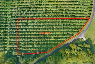 Lot 5 192 Dalwood Road, Dalwood, NSW 2477