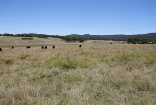 Lot 42 Black Swamp Road, Tenterfield, NSW 2372