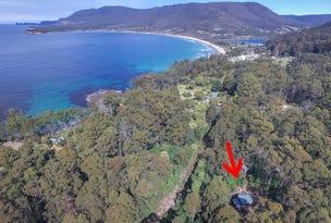 311 Pirates Bay Drive, Eaglehawk Neck, Tas 7179