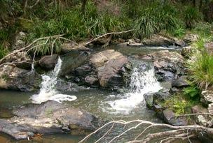 776 Lower Bielsdown Road Megan, Dorrigo, NSW 2453