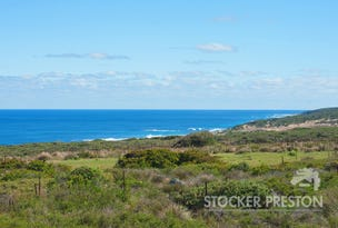 Lot 495 Moses Rock Road, Wilyabrup, WA 6280