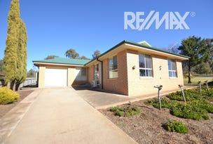 20 John Potts Drive, Junee, NSW 2663