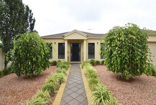 40 Belleview Drive, Irymple, Vic 3498