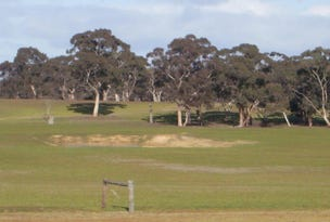200 acres O'Connells Road, Bordertown, SA 5268