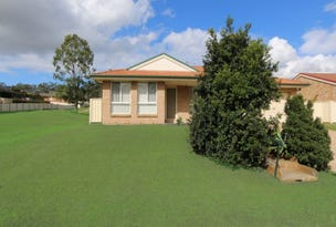 17 Carroll Avenue, Rutherford, NSW 2320