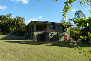 1249 Palmerston Highway, Coorumba, Qld 4860